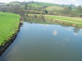 River Creedy & Exe